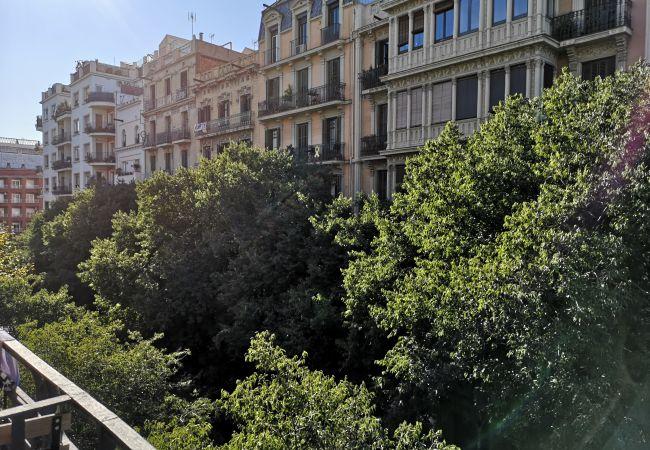 Apartamento en Barcelona - CALABRIA, piso amplio, céntrico y bien comunicado.