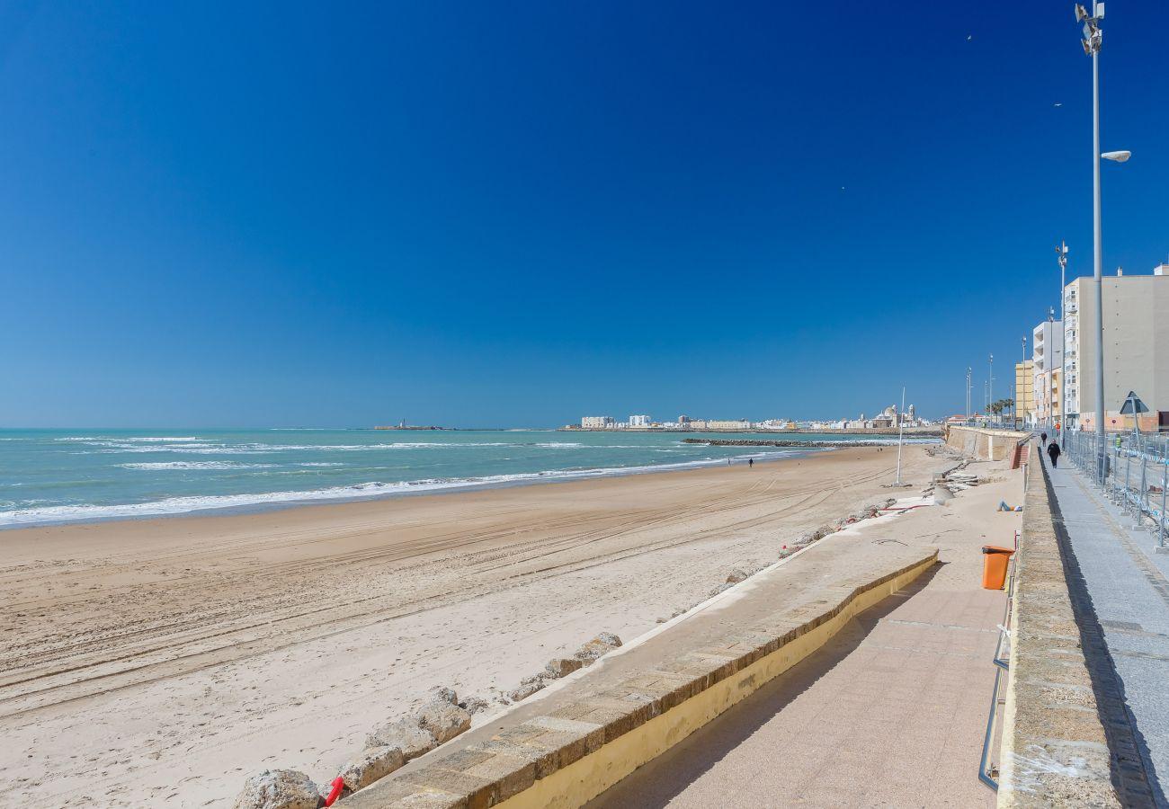 Estudio en Cádiz - Estudio en Cádiz