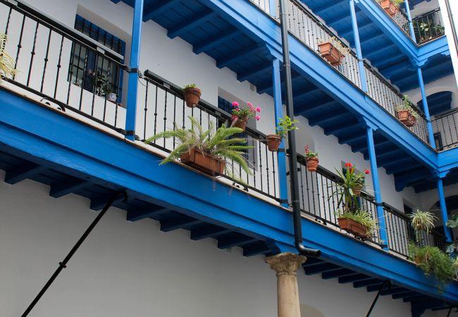 Apartamento en Sevilla - A (S.S.VID30)Coqueto apartamento Barrio Judería
