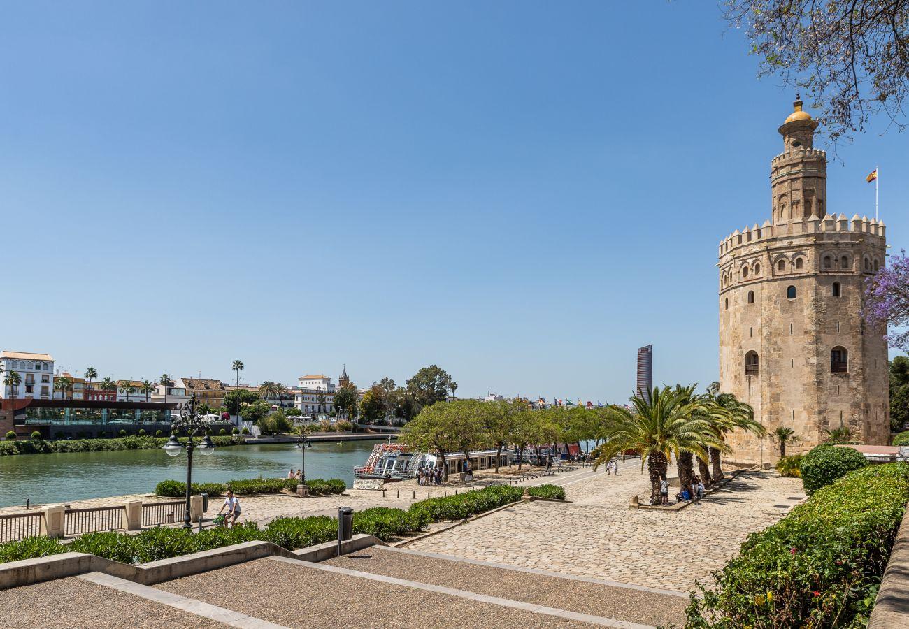 Estudio en Sevilla - Estudio en Sevilla