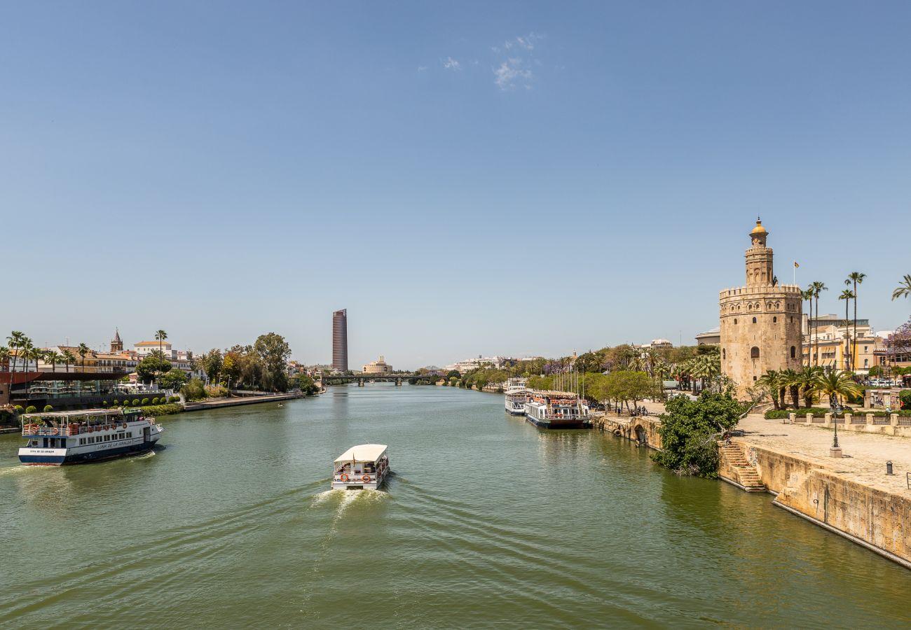 Estudio en Sevilla - Estudio para 3 personas en Sevilla