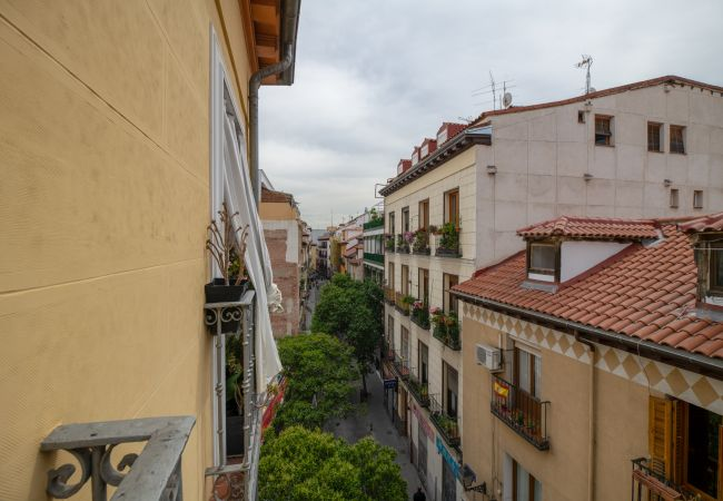 Apartamento en Madrid - Apartment Madrid Downtown La Latina/Plaza Cascorro M (ECM3ºD)