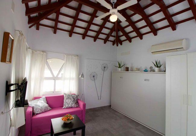 Estudio en Cádiz - Cadiz torre atico con amplia terraza aire wifi  by Lightbooking