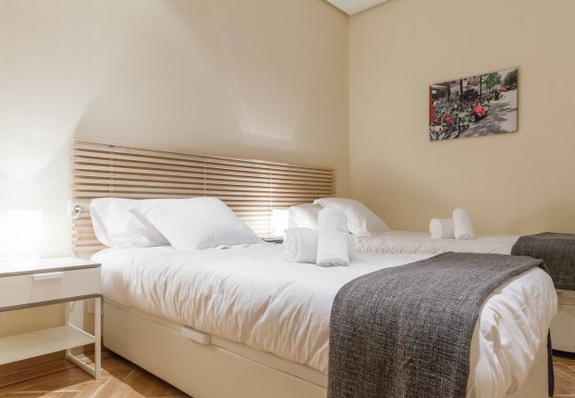 Apartment in Madrid - M (DDL2A)  Luxury apartment in city center