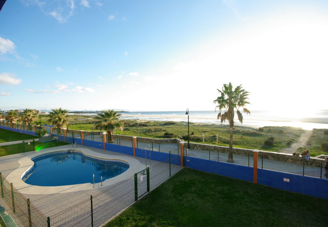 Apartment in Tarifa - Apartment with swimming pool to 10 m beach