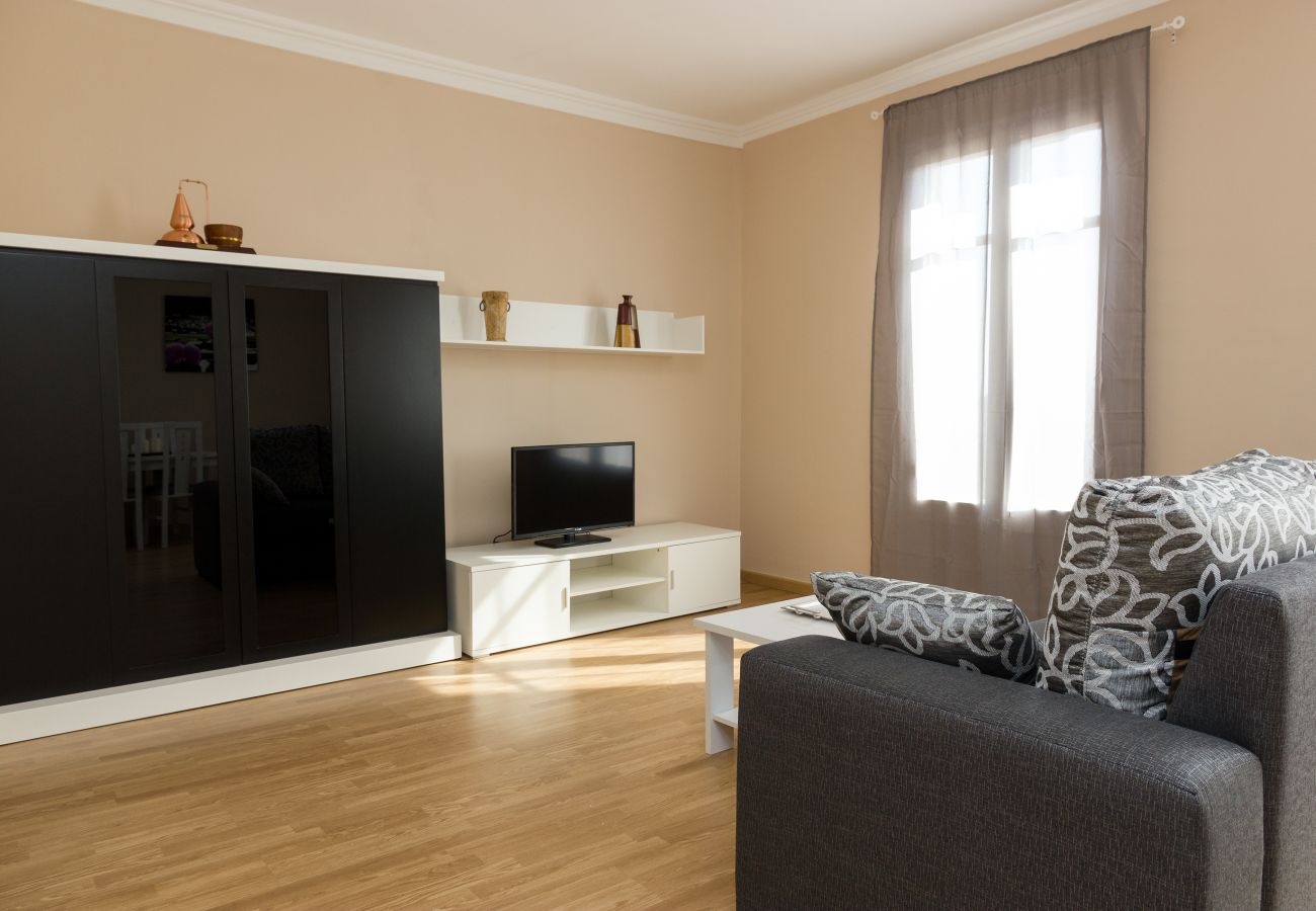 Apartment in Barcelona - Family CIUTADELLA PARK, large, very nice and bright, shared terrace in Barcelona center
