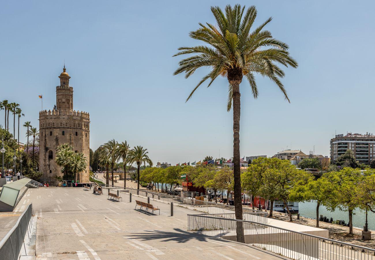Studio in Seville - Studio with air-conditioned in Sevilla